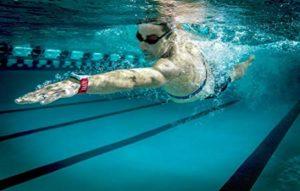 Acquelimpide, attrezzature subacquea, Swim, corsi subacquea